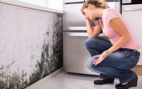 Jak poradzic sobie z wilgocia w domu